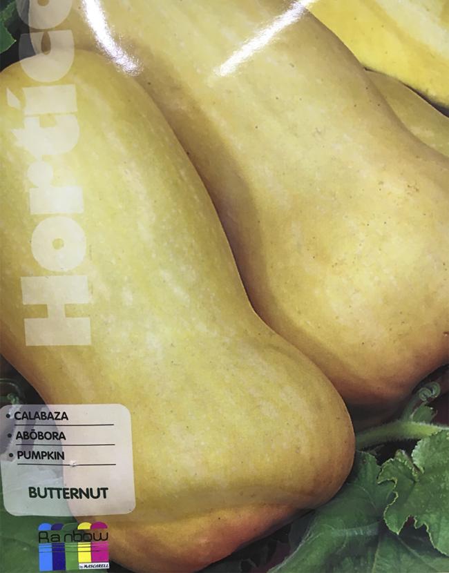 calabaza butternut